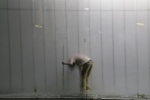 transparent worker HD video https://vimeo.com/25424675