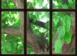 Bialik's Green Room / detail / Yuval Yairi
