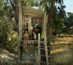 TreeHouse / Palaces of Memory / Yuval Yairi